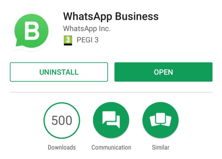 Primeira visão do WhatsApp para empresas